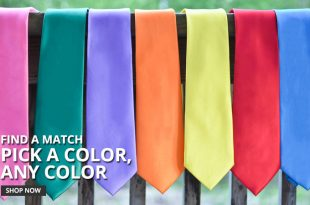 Affordable Solid Color Neckties