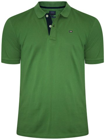 Buy T-shirts Online | Arrow Green Polo T-shirt | Arek0259 | Cilory.com