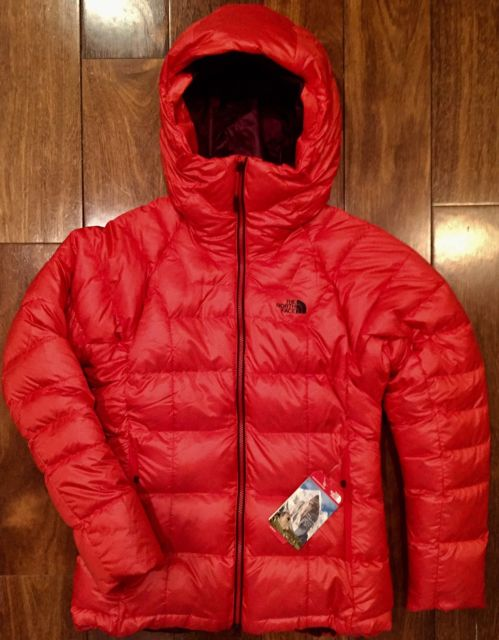 The North Face Mens Immaculate Parka Puffer 800 Down Jacket High